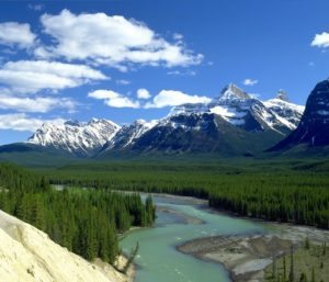 Athabasca River Valley, Jasper National Park