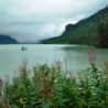 Chilkat River Haines
