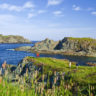 Hiking the coastline near Crow Head in Twillingate, Central