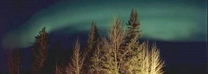 northern-lights-yukon