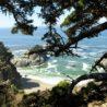 Julia Pfeiffer Burns Big Sur State Park