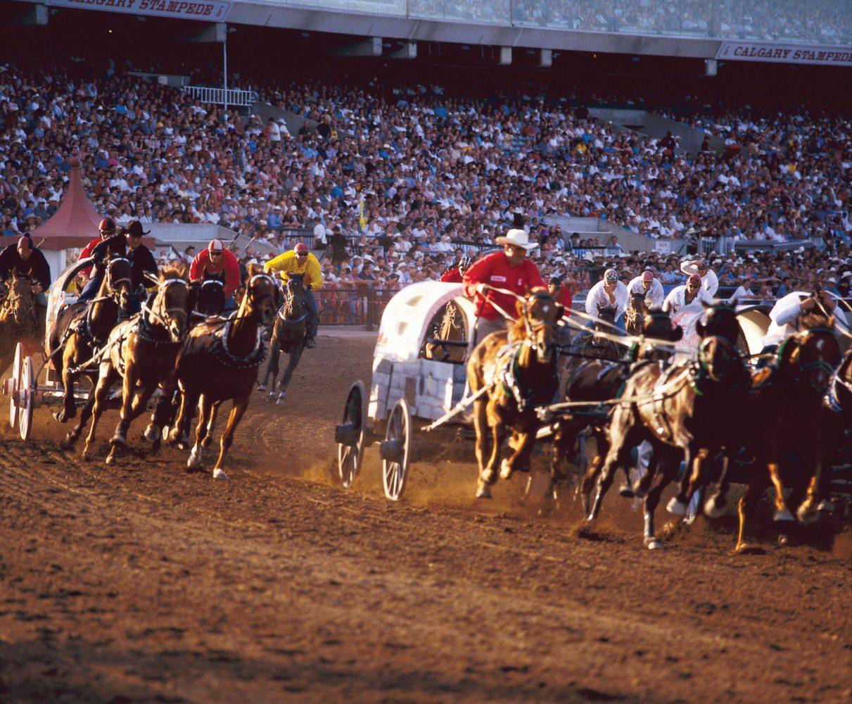 Calgary stampede chucks