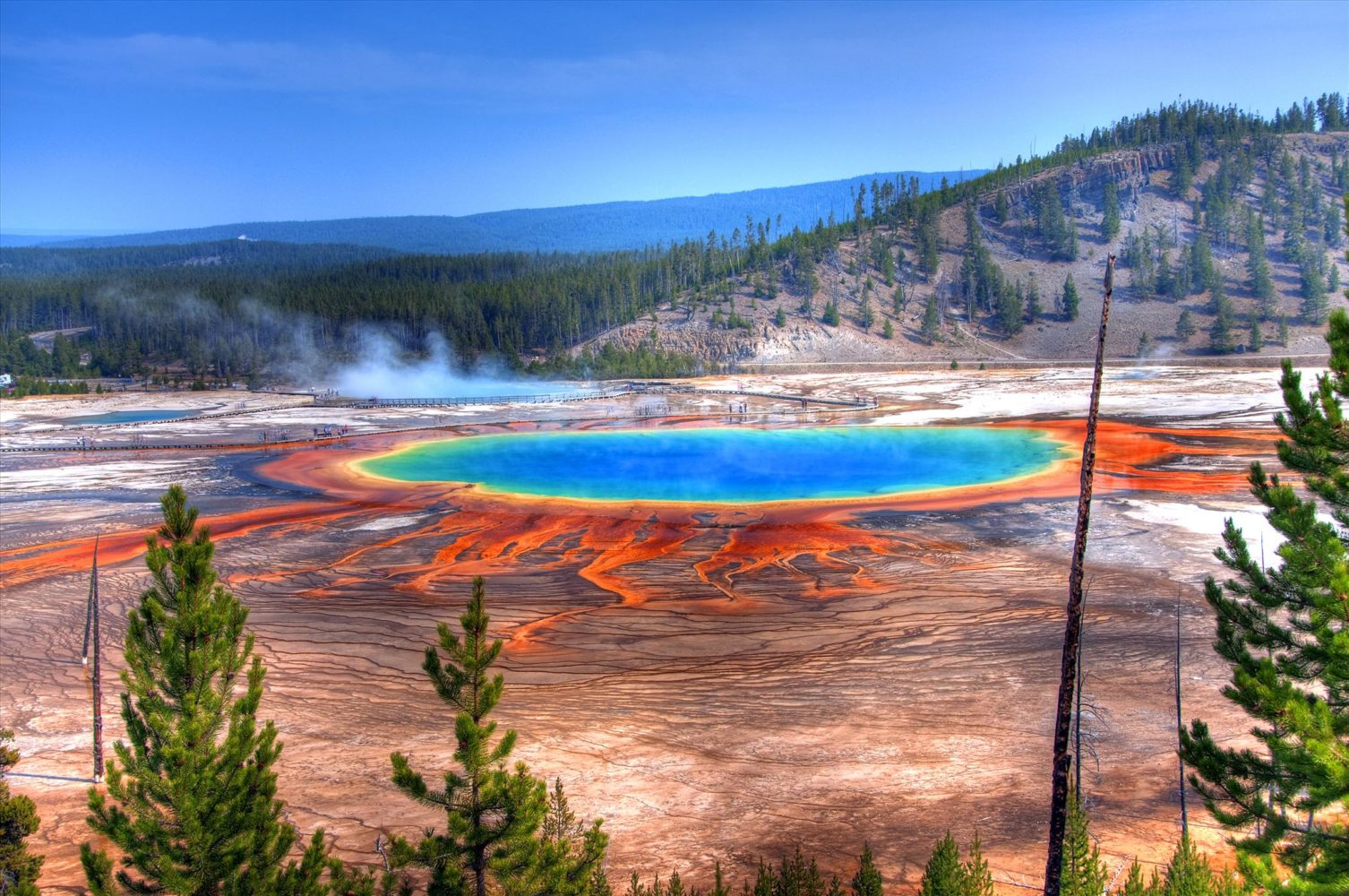 Visit Yellowstone National Park