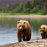 Canadian Bear Lodge offer