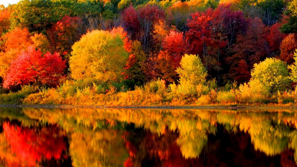 Autumn Colours Escorted Tour