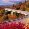 Burlington Fall Foliage, Vermont