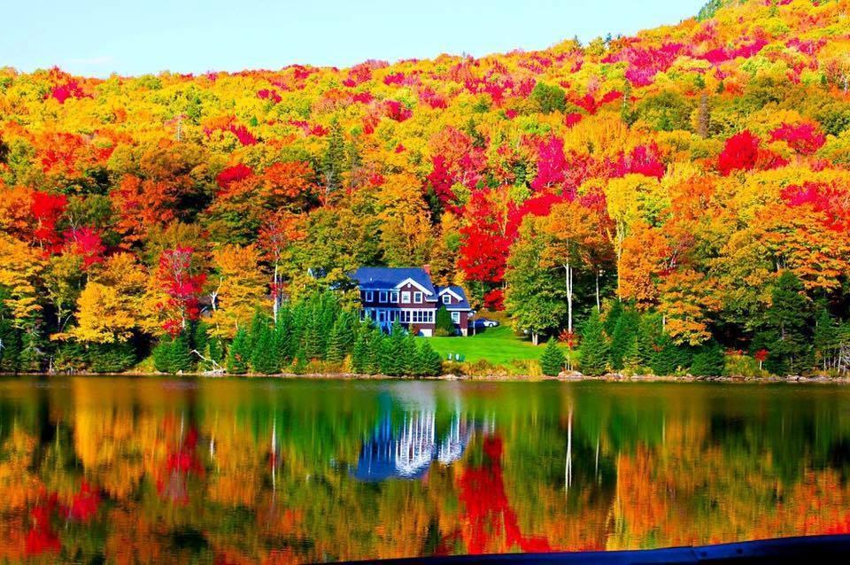 Maine Fall Foliage across a lake