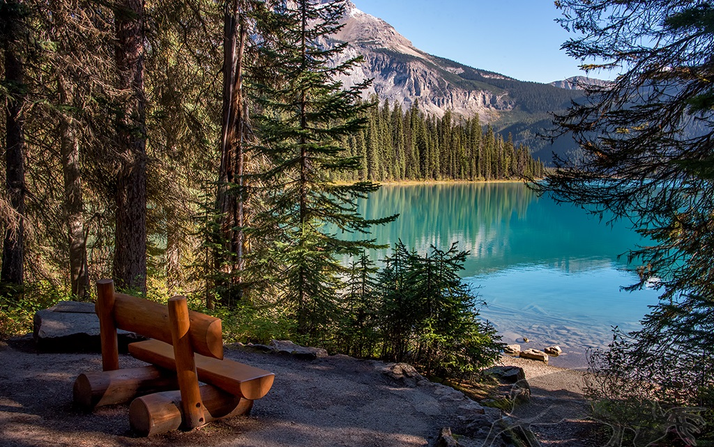 Emerald Lake Trail at Yoho National Park