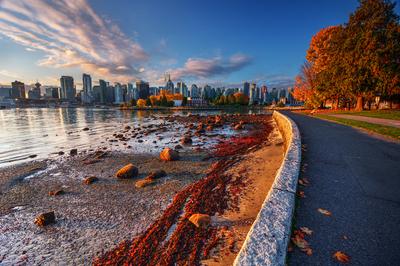 Vancouver shore