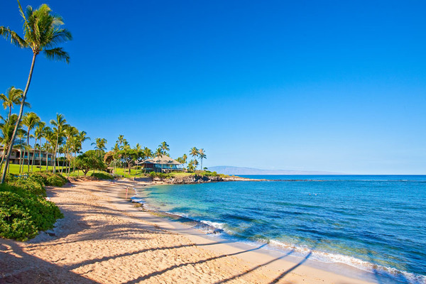 Beach in Maui, Hawaii