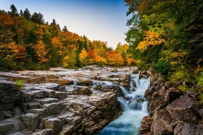 New England fall foliage and river