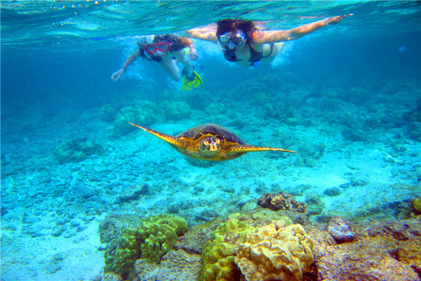 Snorkelling in Kauai
