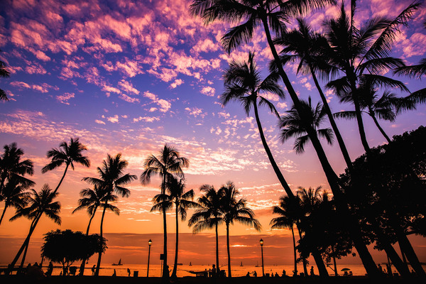 Waikikki beach at sunset, Hawaii