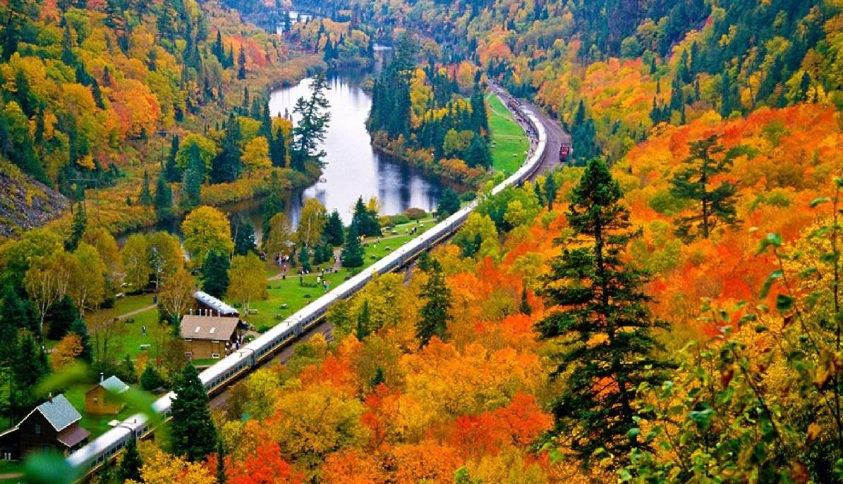 Fall colours in Agawa Canyon, Canada